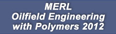 MERL Oilfield Engineering with Polymers - 2012