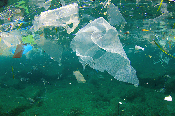 How will the several bans on plastic bags across the world affect the PE Film market?